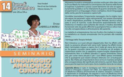 Seminario – LINGUAGGIO ANALOGICO CURATIVO